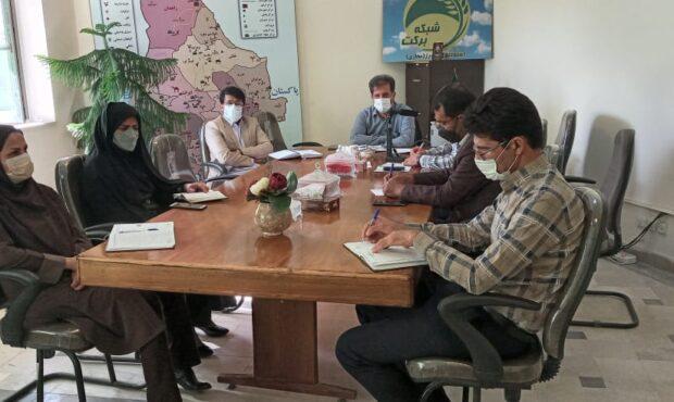 برنامه ملی هفته انتقال یافته های کشت بافت موز در سیستان وبلوچستان برگزار شد
