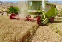 ۶٣٠ میلیارد ریال تسهیلات برای خرید انواع ماشین ها وادوات کشاورزی پرداخت شده است