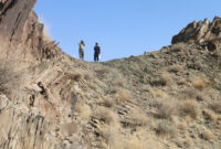 یگان حفاظت محیط زیست شهرستان سرباز به دنبال سرنخ های حمله پلنگ به احشام منطقه است