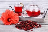 آغاز برداشت چای ترش مزارع سیستان و بلوچستان/ ۷۰۰ تن چای ترش برداشت خواهد شد